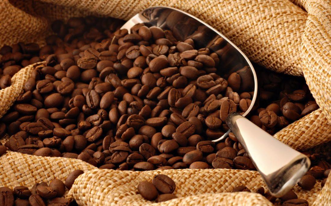 Tipos de tostado de café